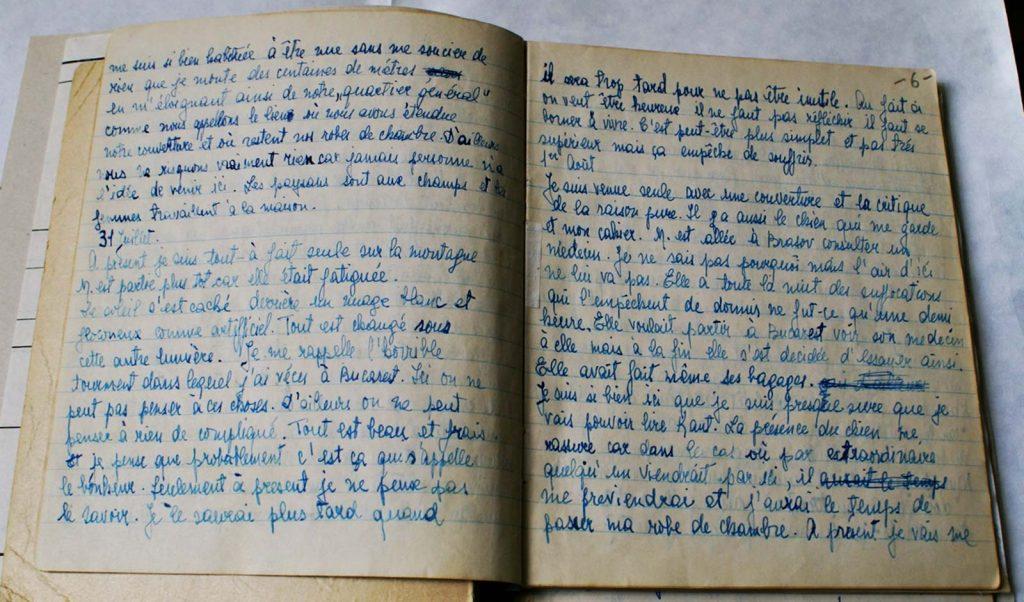 Jurnal în franceză Jeni Acterian