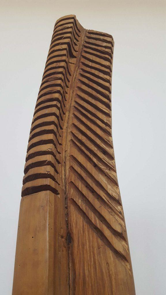Treime - stejar, detaliu - Gheorghe-Iliescu Călinești © foto Peter Sragher