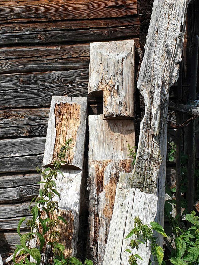Lemn pe lemn © foto Peter Sragher
