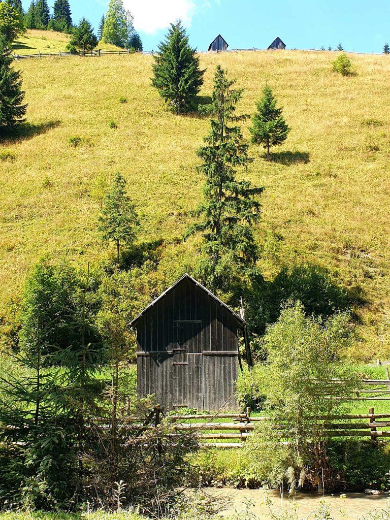 Valea Cârlibabei © foto Peter Sragher