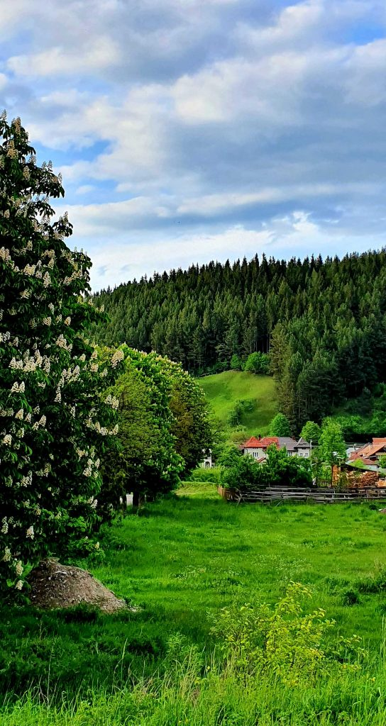 Peisaj Câmpulung Moldovenesc © foto Peter Sragher