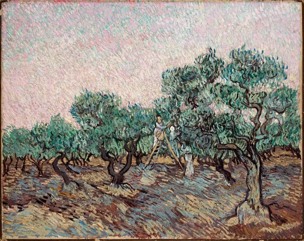 Vincent van Gogh, La cules de măsline, 1889, ulei pe pânza © foto Basil & Elise Goulandris Foundation